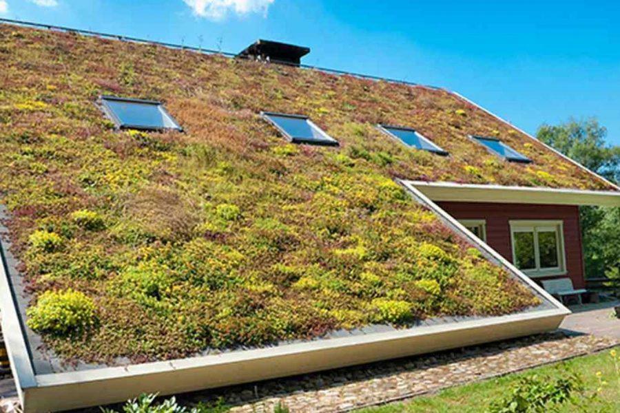 """Зелените"" покриви – практични и красиви 2"